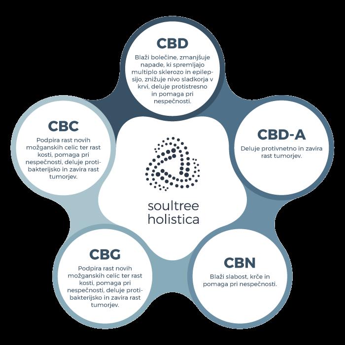 Glavni naravni kanabinoidi, ki jih vsebuje CBD olje s polnim spektrom učinkovin